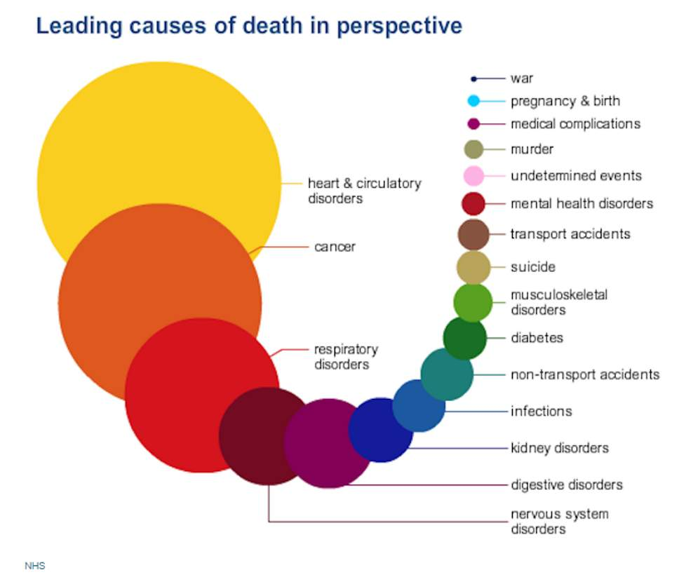Leading cause of death in perspective-min