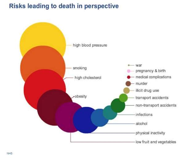 risks leading to death in perspective-min